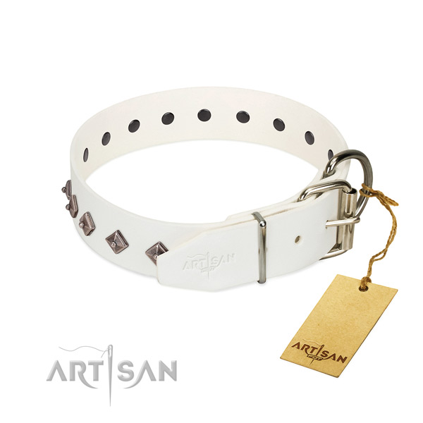 Stylish design adornments on genuine leather collar for comfy wearing your four-legged friend