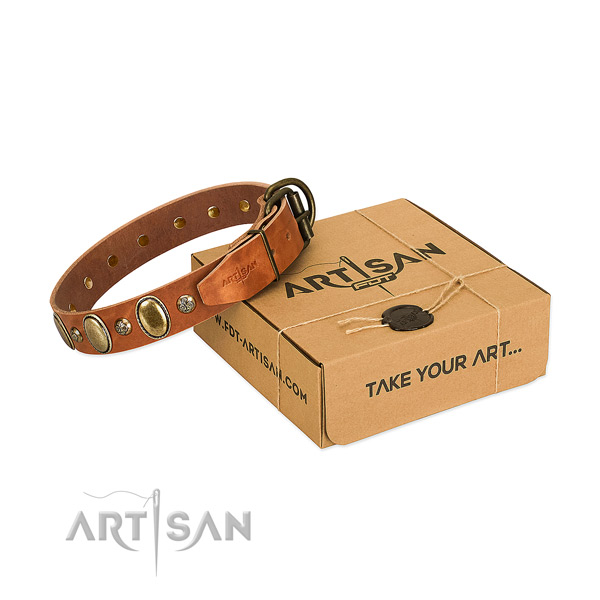 Easy to adjust genuine leather dog collar with durable buckle