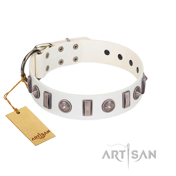 Top rate natural leather dog collar with adornments for your doggie