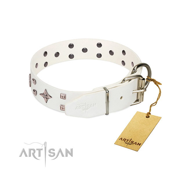 Stunning genuine leather collar for your doggie everyday walking
