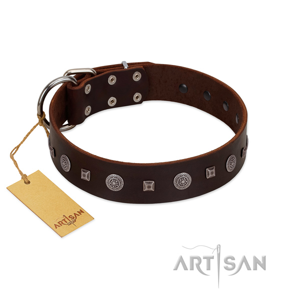 Walking flexible full grain natural leather dog collar with embellishments