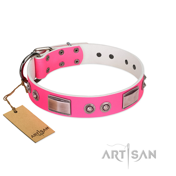 Easy wearing full grain natural leather collar with studs for your four-legged friend