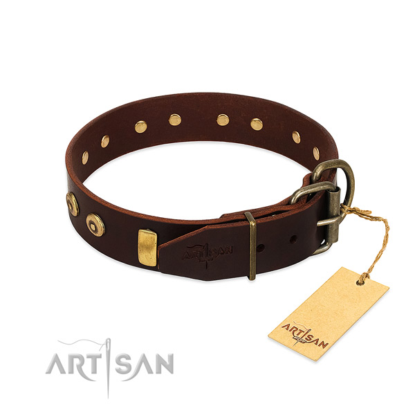 Strong full grain leather dog collar with unusual studs