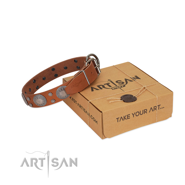 Unusual embellishments on natural leather collar for comfy wearing your pet