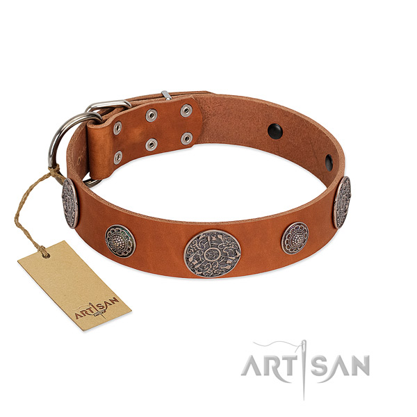 Unusual full grain leather collar for your attractive pet