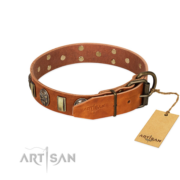 Full grain leather dog collar with strong fittings and embellishments