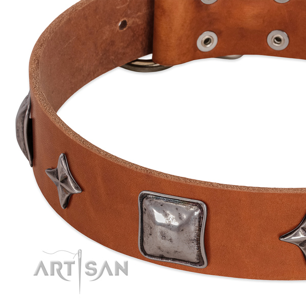 Best quality full grain genuine leather dog collar with reliable fittings