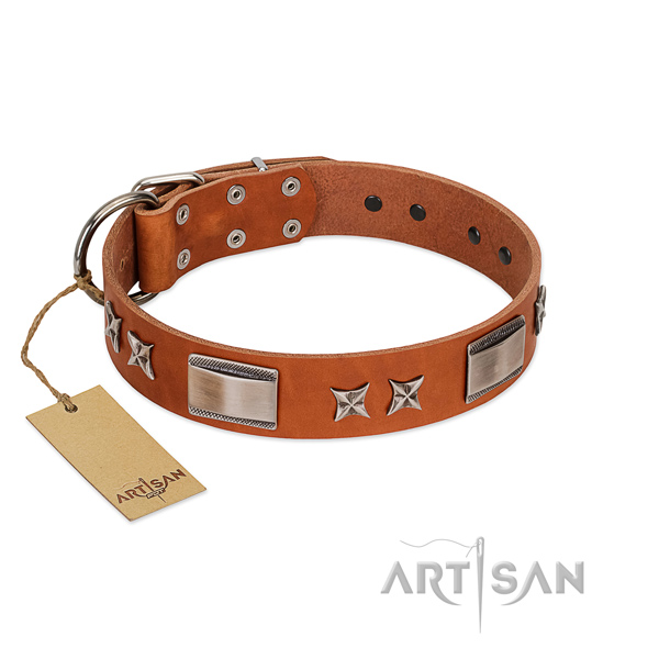 Top rate leather dog collar with durable D-ring