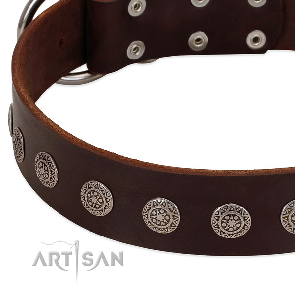 Amazing dog collar of leather with adornments