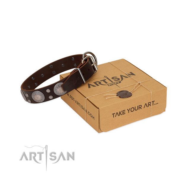 Extraordinary decorated full grain natural leather dog collar for stylish walking