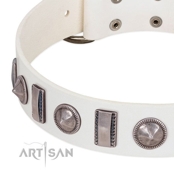 Stylish design studded full grain genuine leather dog collar for everyday walking
