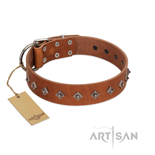 Genuine leather dog collar with extraordinary embellishments crafted canine