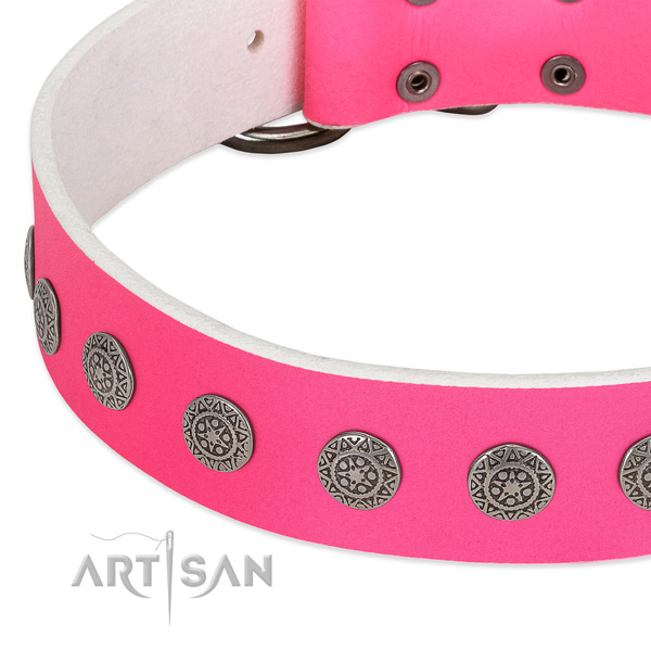 Extraordinary full grain leather collar with studs for your four-legged friend