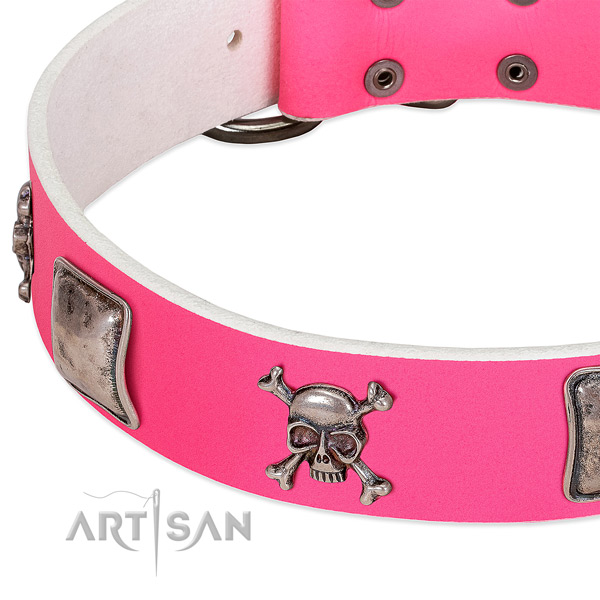 Rust resistant buckle on genuine leather dog collar