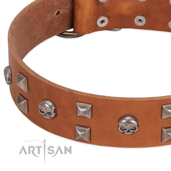 Quality leather dog collar made for your canine