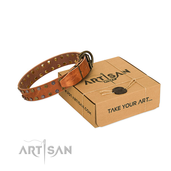 Everyday use quality full grain natural leather dog collar with embellishments
