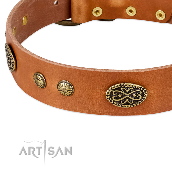 Rust-proof traditional buckle on leather dog collar for your canine