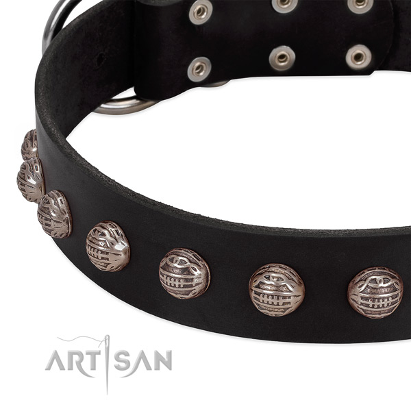 Leather collar with stunning adornments for your pet