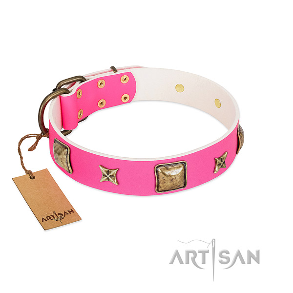 Genuine leather dog collar of flexible material with extraordinary embellishments