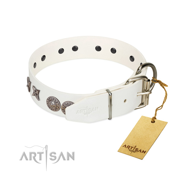 Walking quality full grain leather dog collar with embellishments