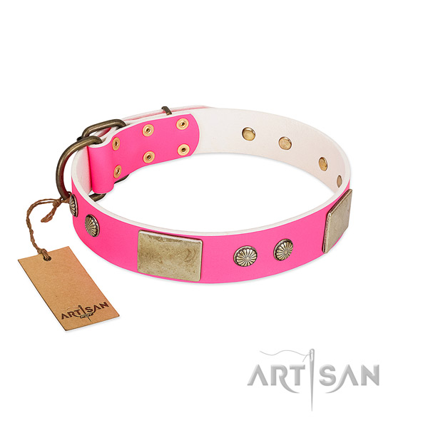 Easy wearing full grain leather dog collar for stylish walking your doggie