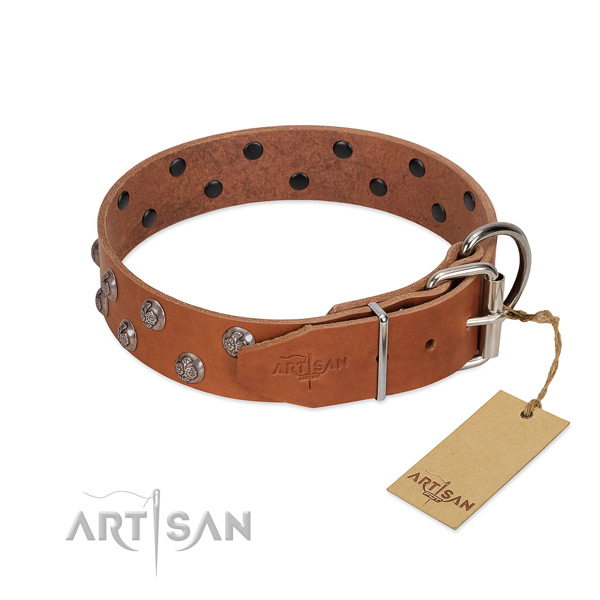 Corrosion proof fittings on adorned full grain natural leather dog collar