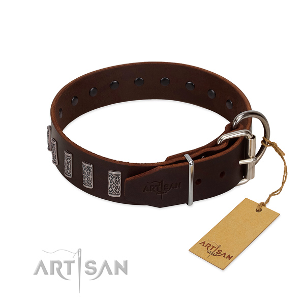 Rust resistant buckle on full grain natural leather dog collar for walking your dog