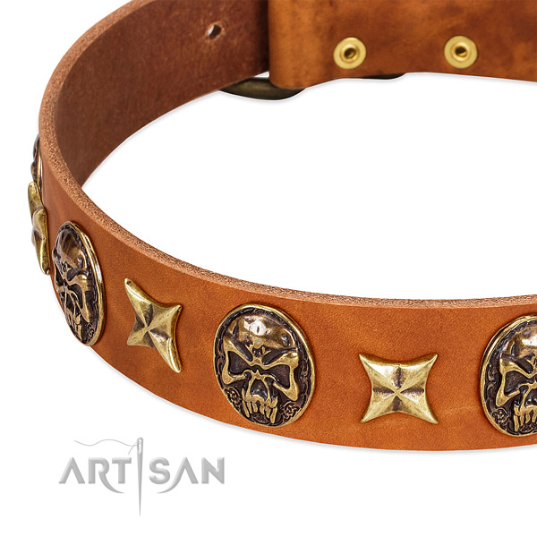 Rust-proof studs on full grain genuine leather dog collar for your doggie
