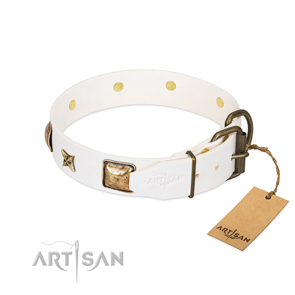 Leather dog collar with corrosion resistant fittings and embellishments