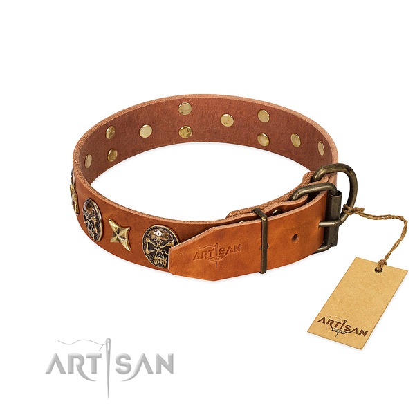 Leather dog collar with reliable hardware and adornments