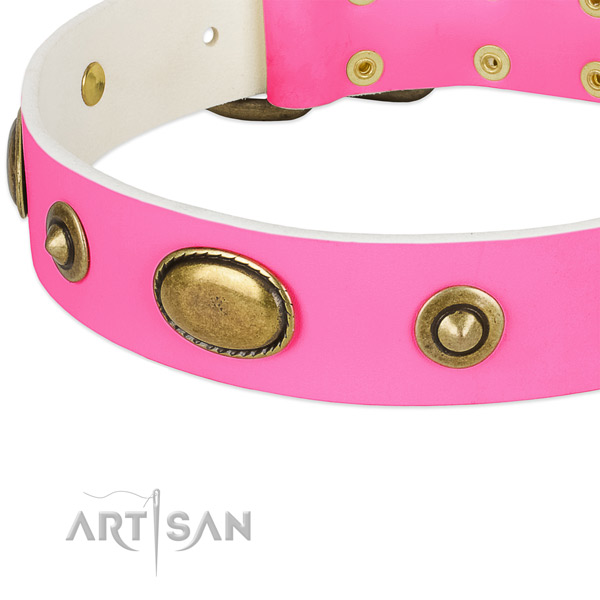 Rust resistant embellishments on full grain genuine leather dog collar for your four-legged friend