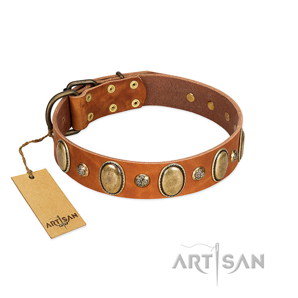 Full grain genuine leather dog collar of top notch material with exceptional adornments