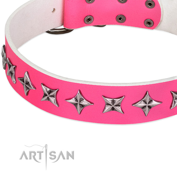 Everyday use decorated dog collar of top notch leather