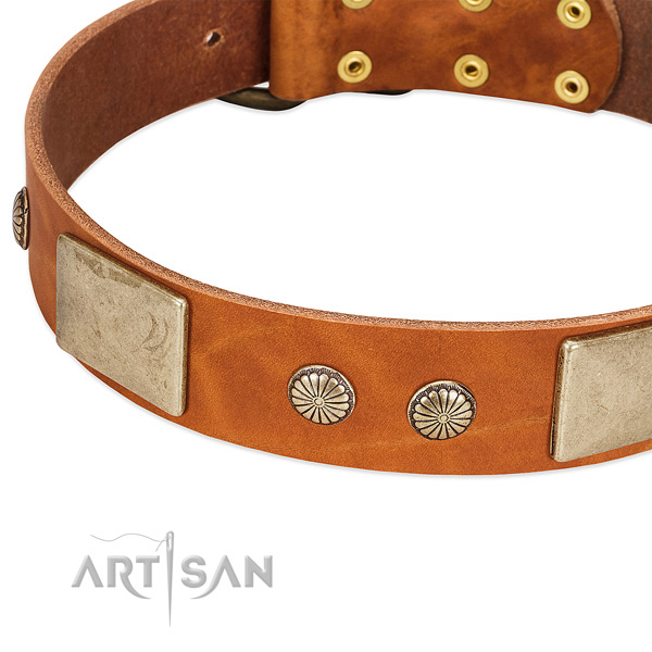 Corrosion proof fittings on full grain natural leather dog collar for your four-legged friend