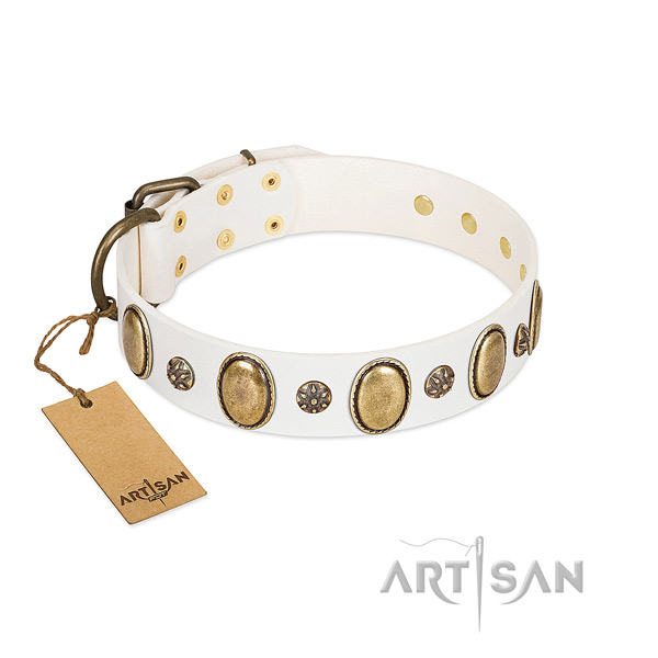 Walking gentle to touch leather dog collar with adornments