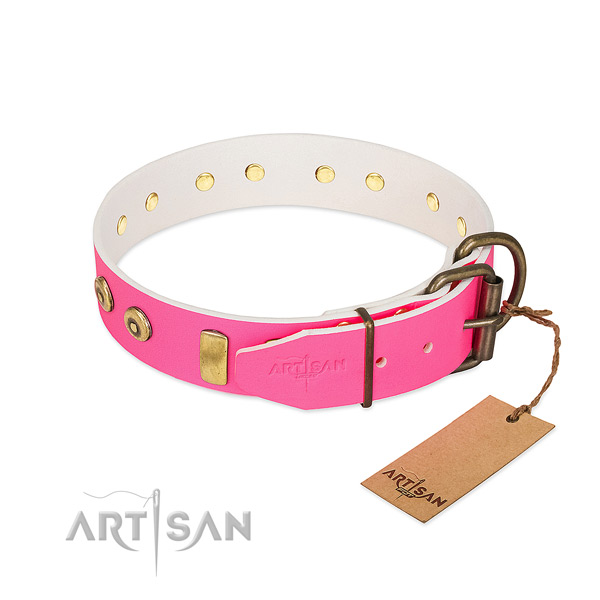 Corrosion proof embellishments on comfy wearing dog collar