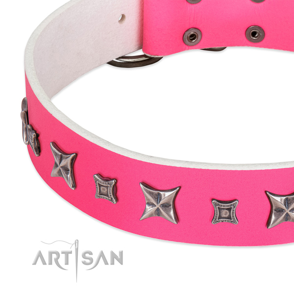 Everyday use adorned leather collar for your canine