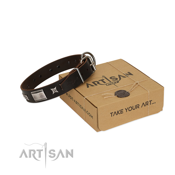 Designer collar of genuine leather for your attractive canine
