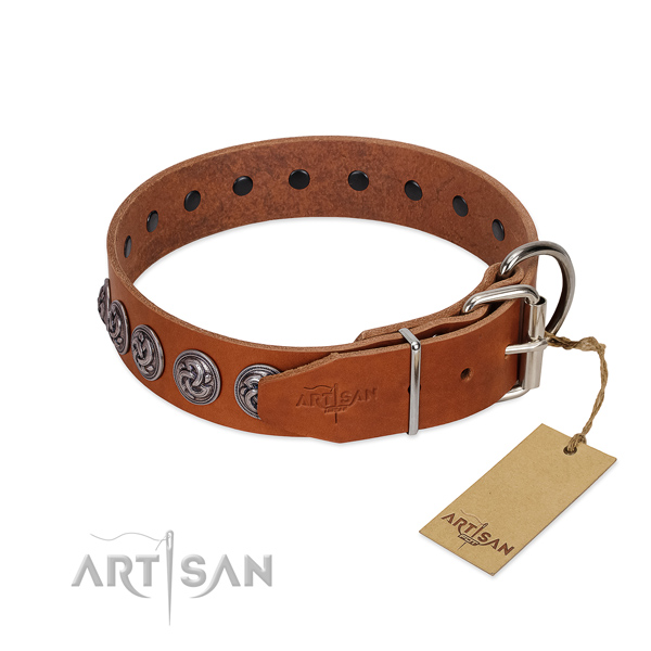Rust-proof traditional buckle on fine quality leather dog collar