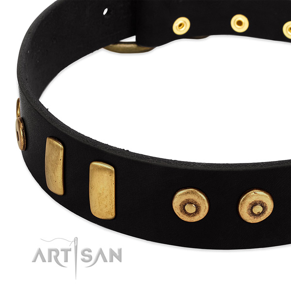 Soft full grain leather collar with stunning embellishments for your dog