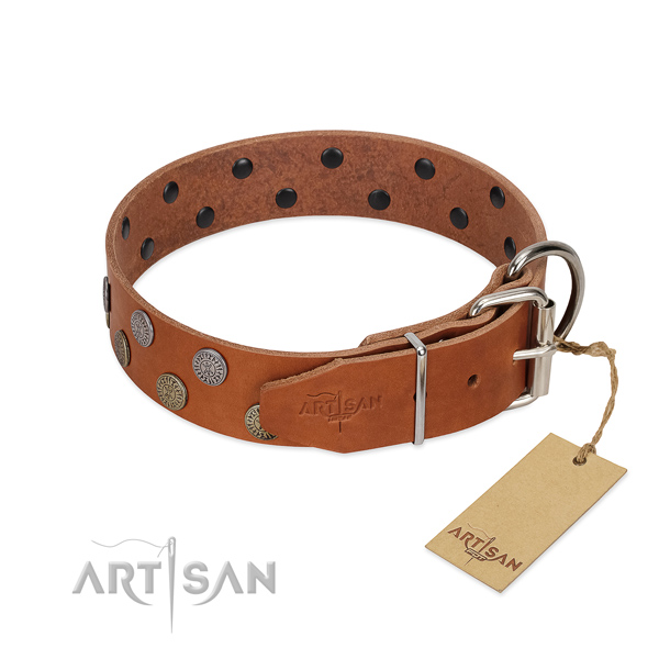 Corrosion proof D-ring on full grain genuine leather dog collar for walking