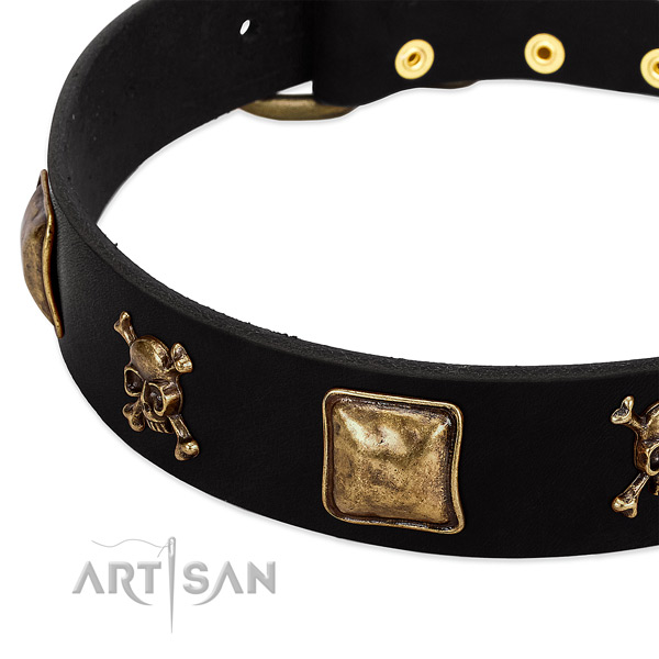 Top rate full grain natural leather collar with studs for your doggie