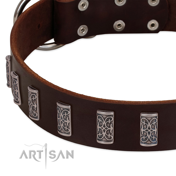 Durable natural leather dog collar made for your dog