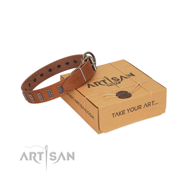 Rust resistant D-ring on leather collar for walking your four-legged friend
