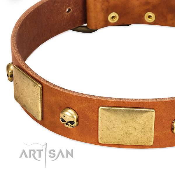 Quality full grain natural leather dog collar with rust-proof D-ring