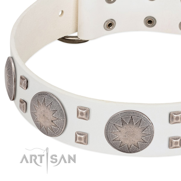 Strong hardware on natural genuine leather collar for daily walking your pet