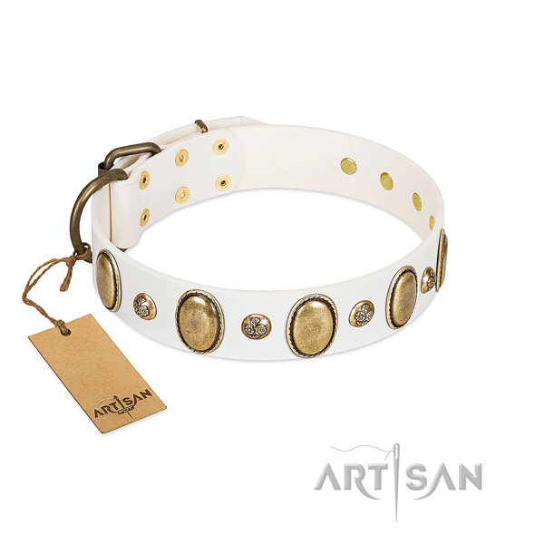 Leather dog collar of soft material with unique embellishments