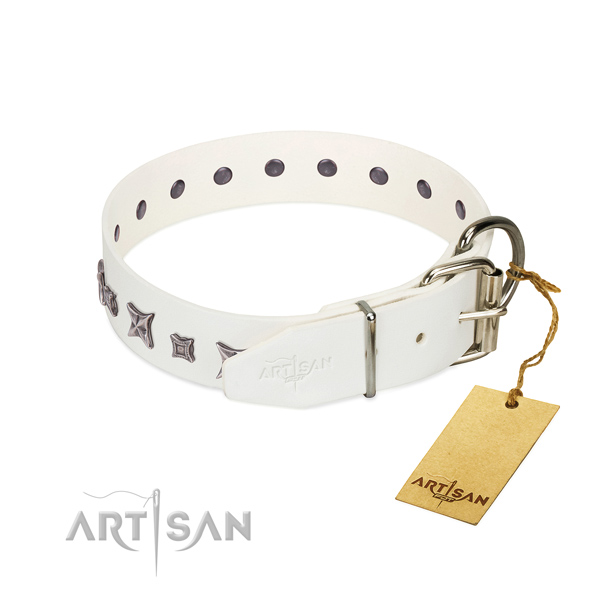 Natural leather dog collar with unique adornments handcrafted canine