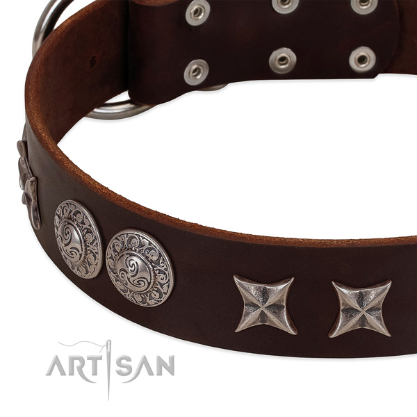 Unusual full grain leather dog collar with rust-proof traditional buckle