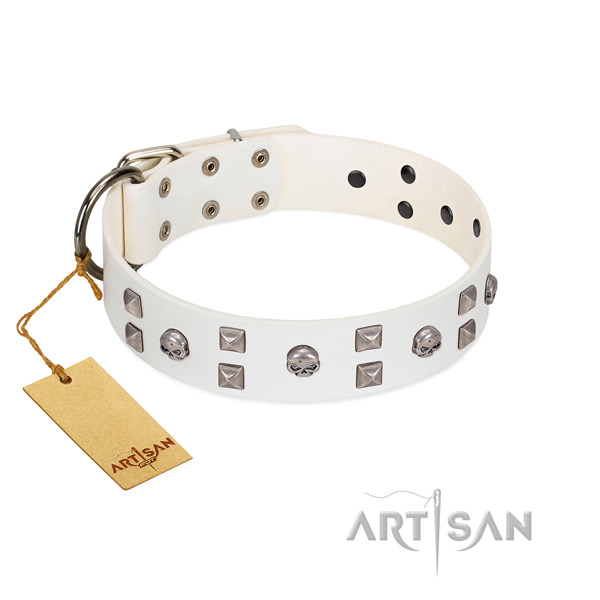 Daily use dog collar of genuine leather with designer decorations
